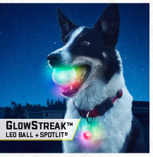 GlowStreak LED Ball & SpotLit